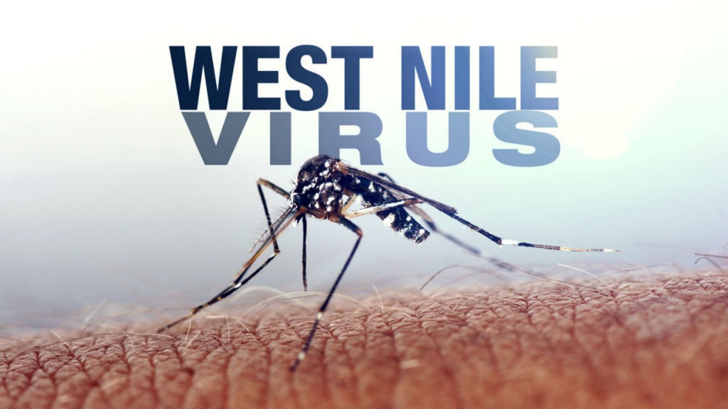 west_nile_ffc84.jpg