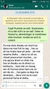 mesaj1