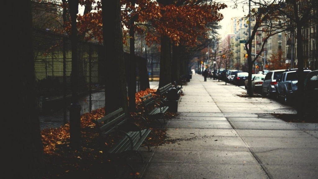 cold-autumn-day-new-york-city-fall.jpg