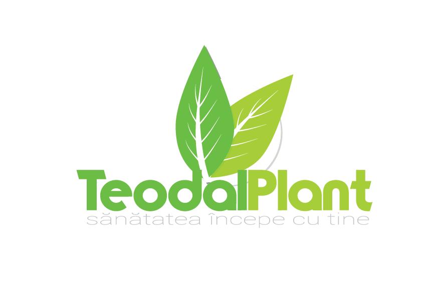 teodal-logo_865dc.png