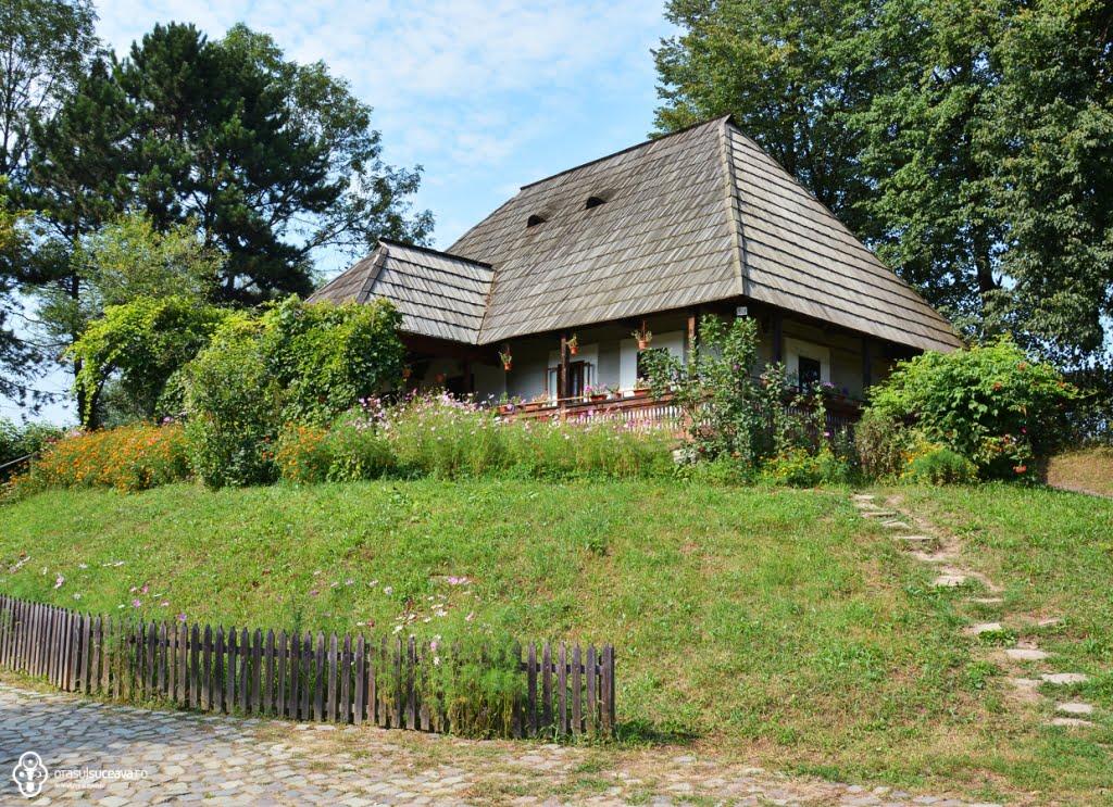 muzeul satului.jpg