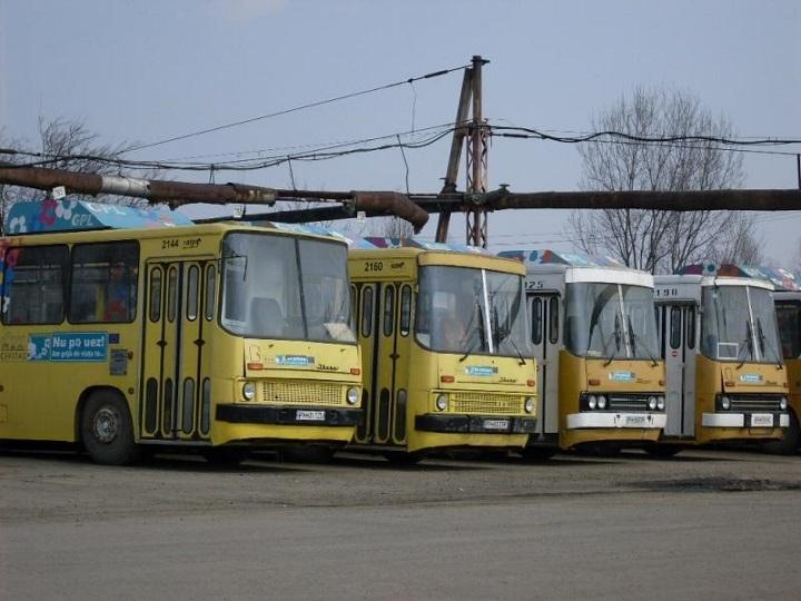autobuze-ploiesti-zgomot-studiu-caz.jpg
