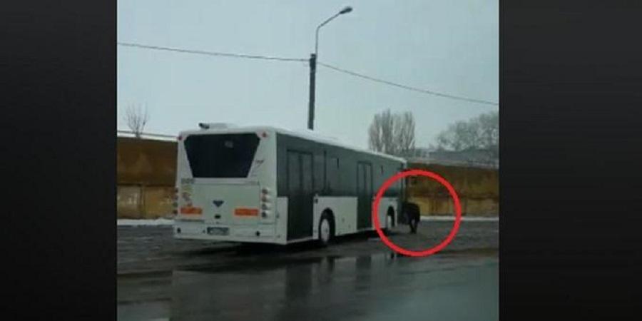 autobuz-tce.jpg