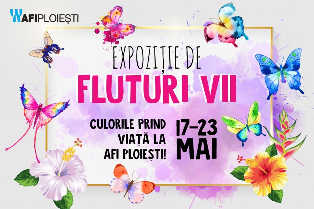 AFI_Ploiesti_expozitie_fluturi_vii_94139.jpg