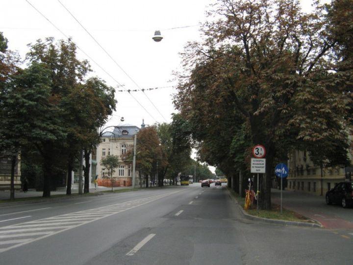 circulatie-oprita-ploiesti-festival-street-food_0ecc5.jpg