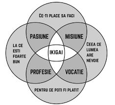 IKIGAI_1_c6251.png