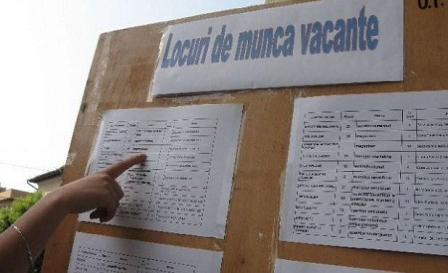 locuri-munca-vacante_73dbf.jpg