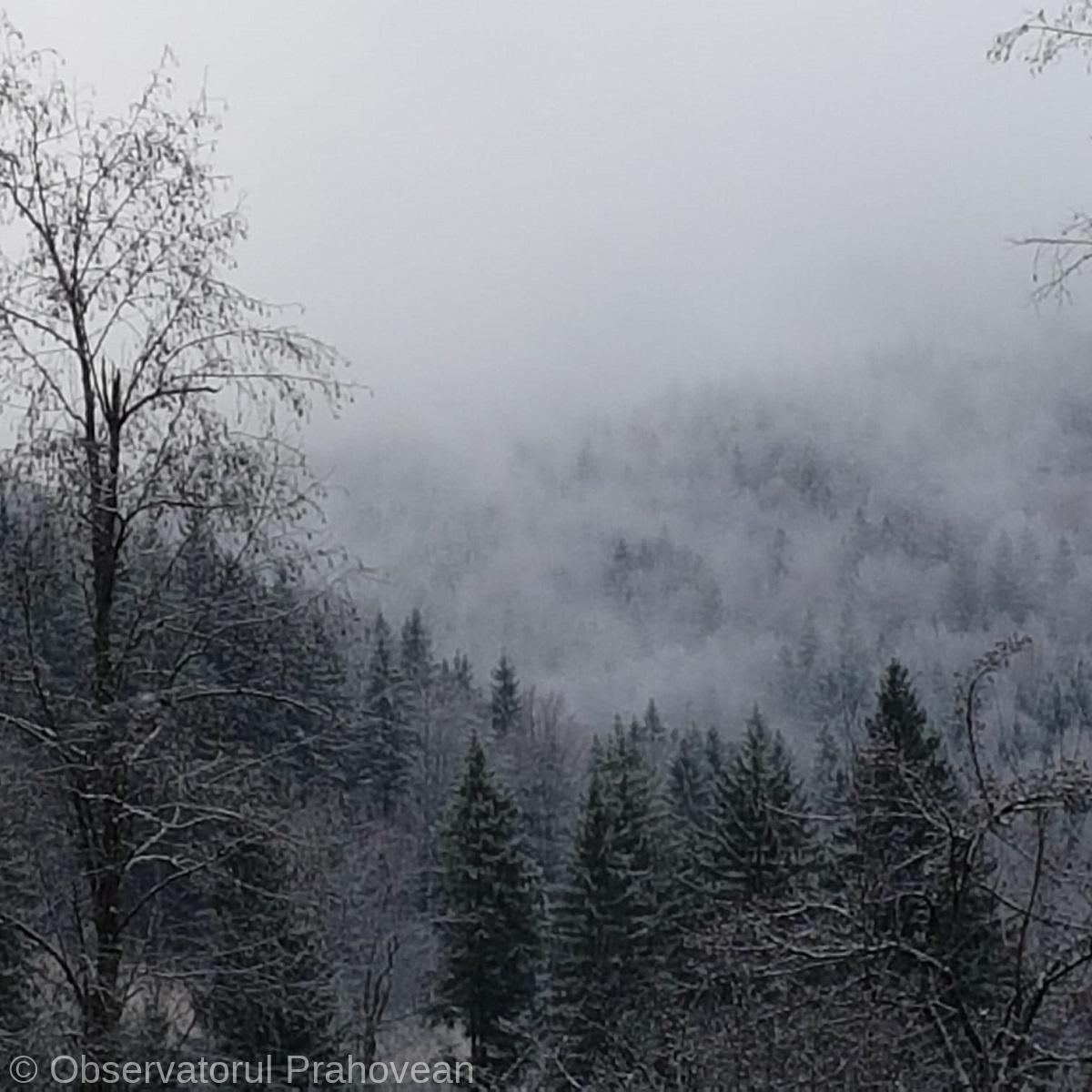 iarna munte b5bf4