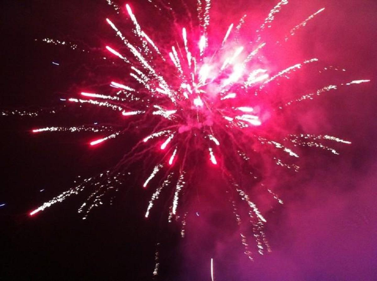 foc-artificii-filipestii-de-padure_78579.jpg