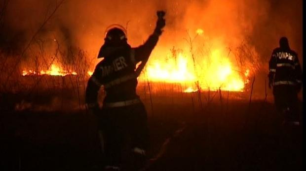 incendiu-vegetatie-Comarnic-Talea_e0acb.jpg