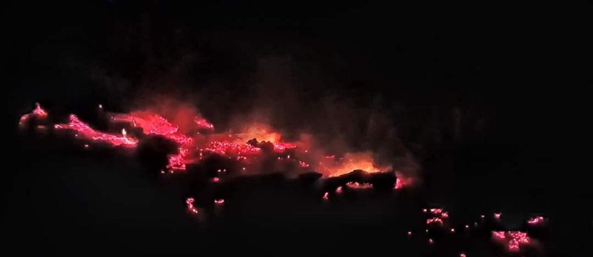 incendiu-vegetatie-uscata_074a8.jpg