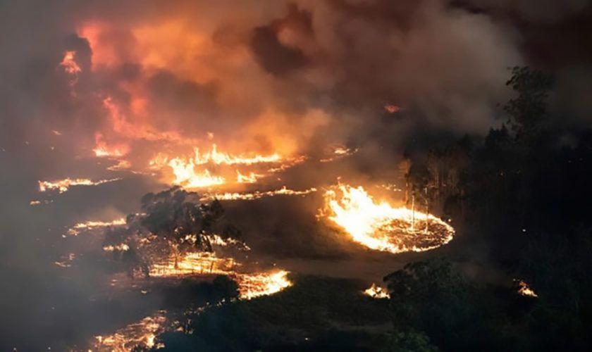 statistica-australia-incendiu-840x500-1578468611q0dotkq_9a90b.jpeg