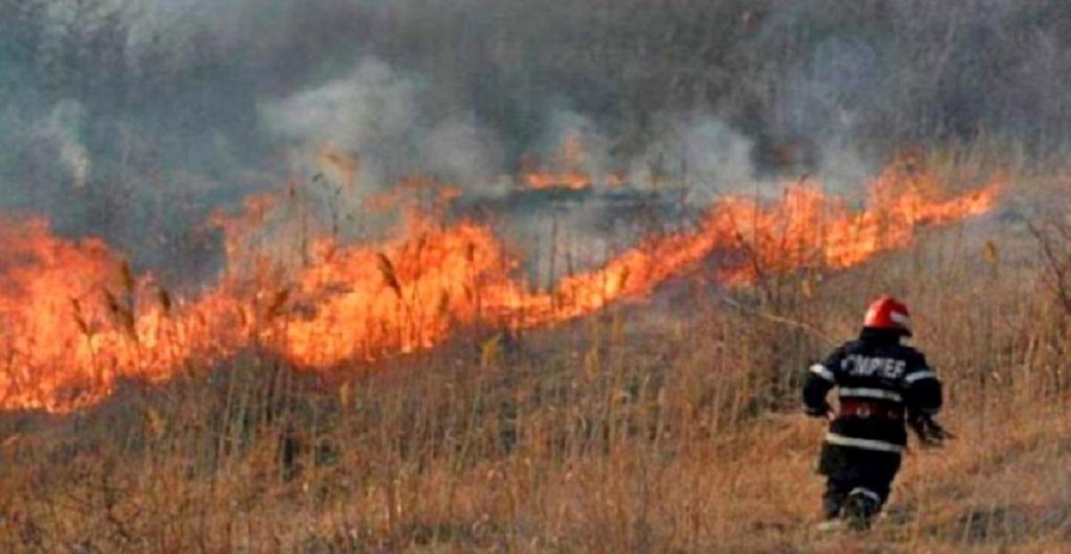 incendiu-vegetatie-uscata-pacureti_95644_4ee58.jpg