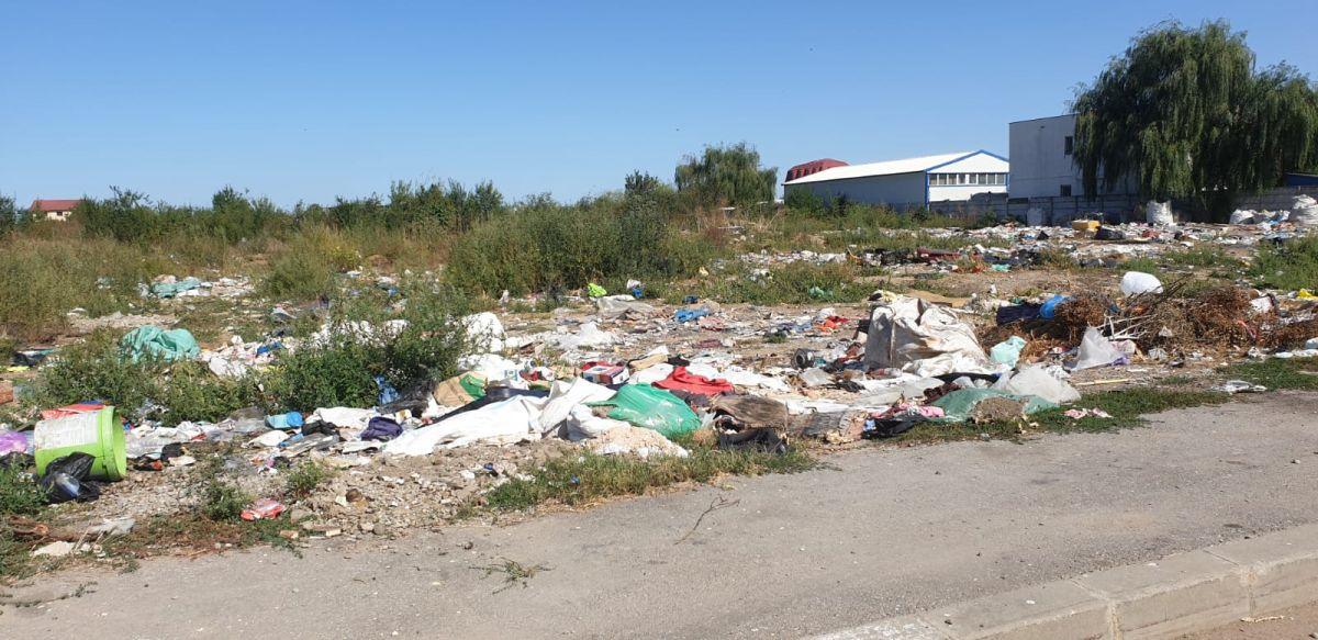 """FOTO: Cartierul Bereasca a ajuns o imensă groapă ilegală de gunoi. """"Am făcut degeaba zeci de reclamații la primărie și Rosal!"""""""