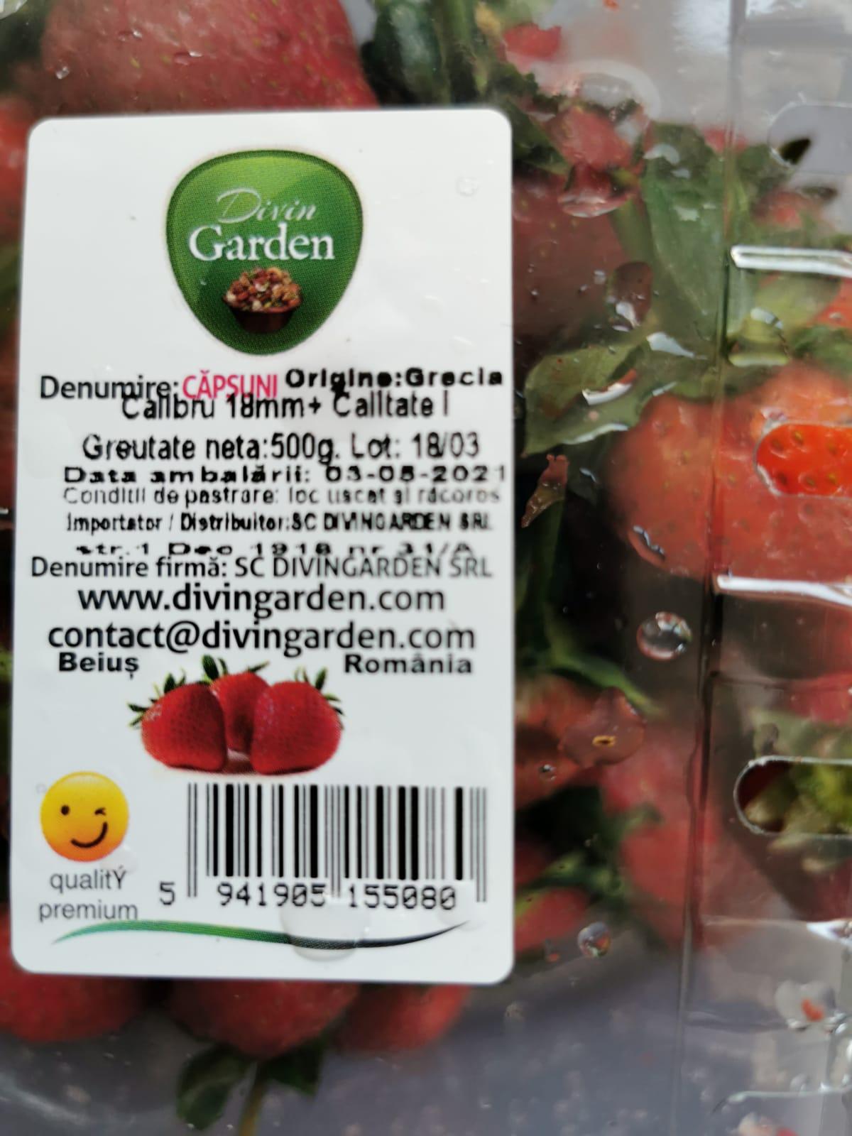 """""""Am cumpărat aceste căpșune de la Kaufland Nord și mai mult de jumătate erau stricate"""""""